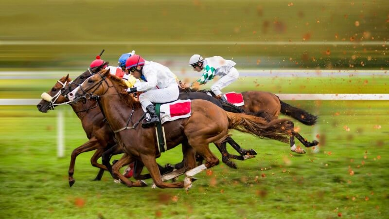 Horse racing fast hooves