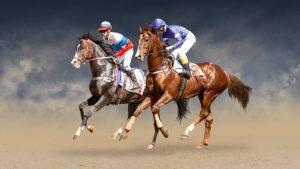 best horse racing betting app
