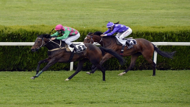 best us horse racing bookmakers