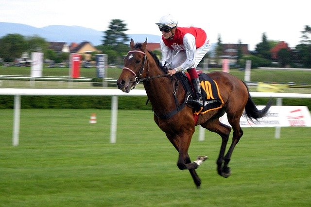 best betting strategies for horse racing