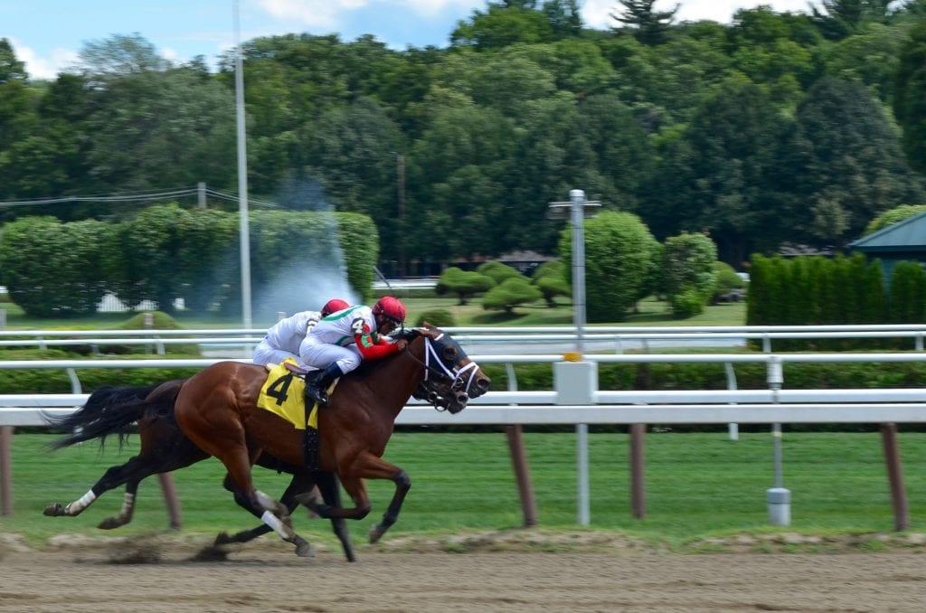 best horse racing system