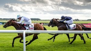 Irish Derby Preview – Who Should You Back for Curragh Classic?