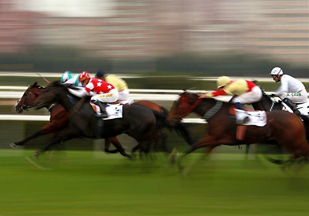 horse racing bookmakers uk