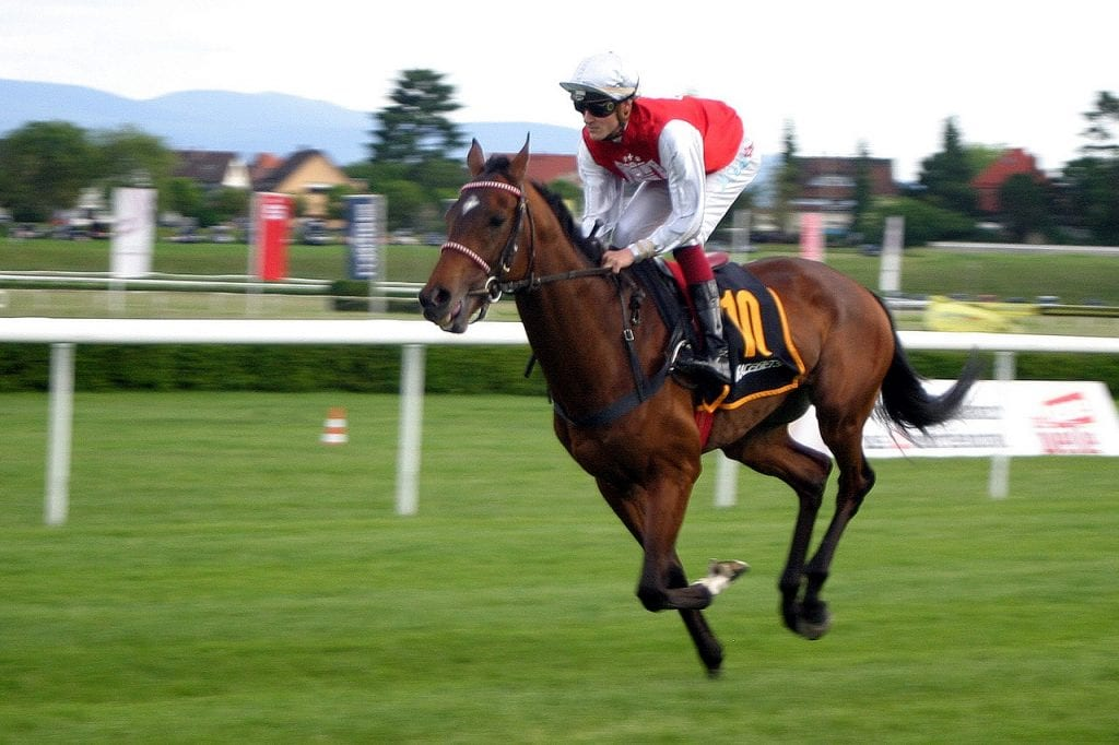 horse racing betting offers