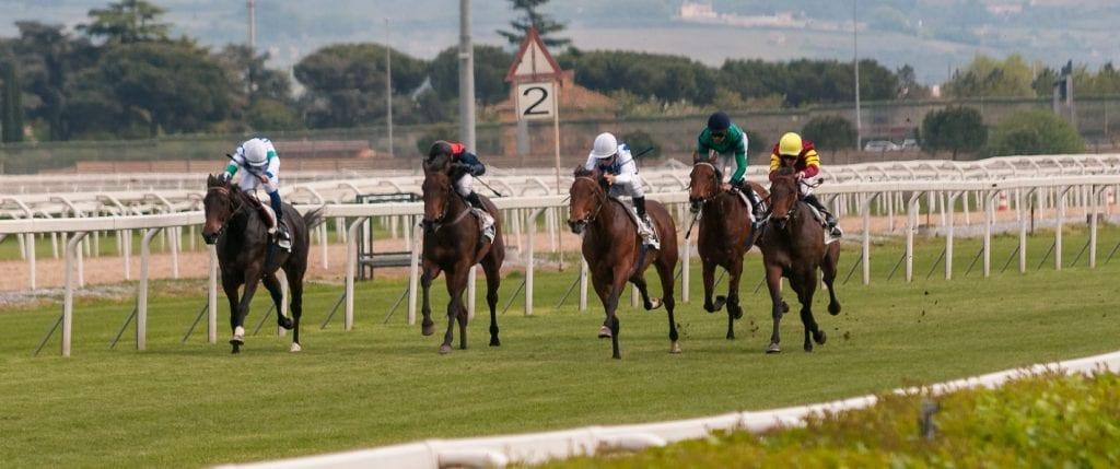 horse racing odds comparison uk
